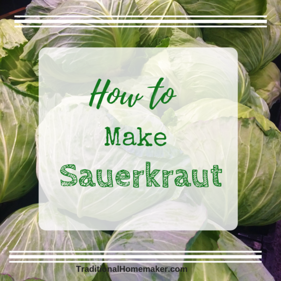 Anytime is a great time to learn how to make sauerkraut! This enzyme-packed, nutrient dense food is simple to make and cabbage is always affordable.