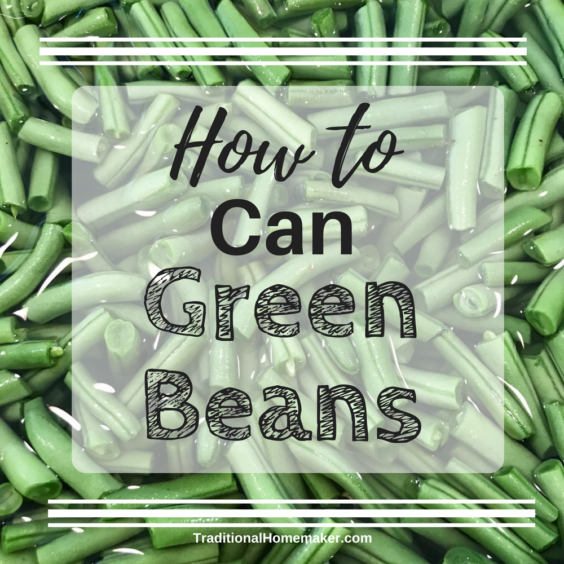 Green beans are a simple vegetable to begin canning. They are the most popular veggie in our house so I thought I'd teach you how to can green beans.