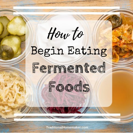 Fermented foods aren't something that immediately pops into my mind as health foods. But they are! Let me explain to you how important it is to begin eating fermented foods.