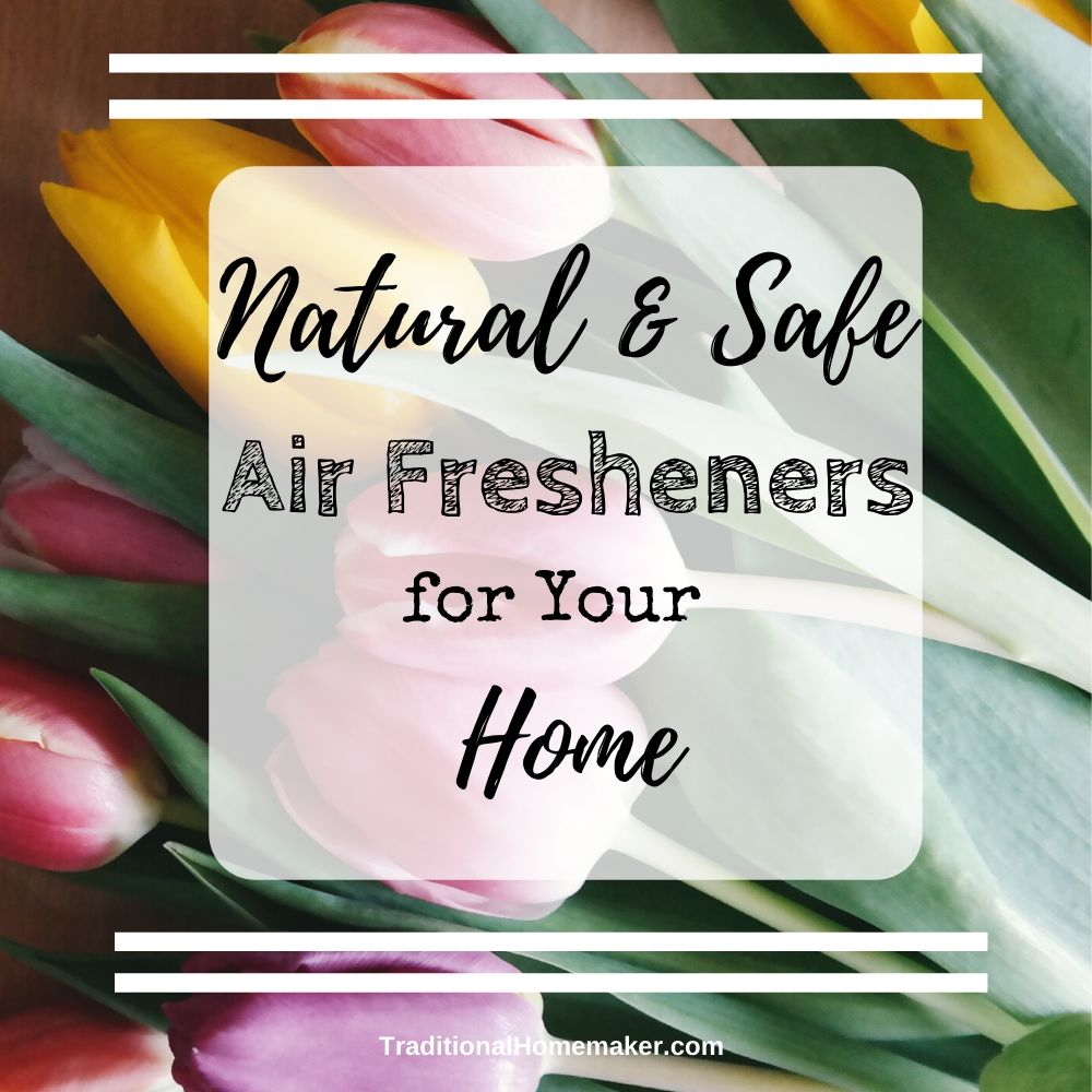 Nobody has time for a stinky house. Try these natural and safe air fresheners for your home so you can be excited to walk in your front door again.